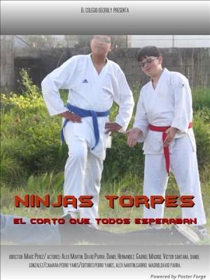 Ninjas torpes